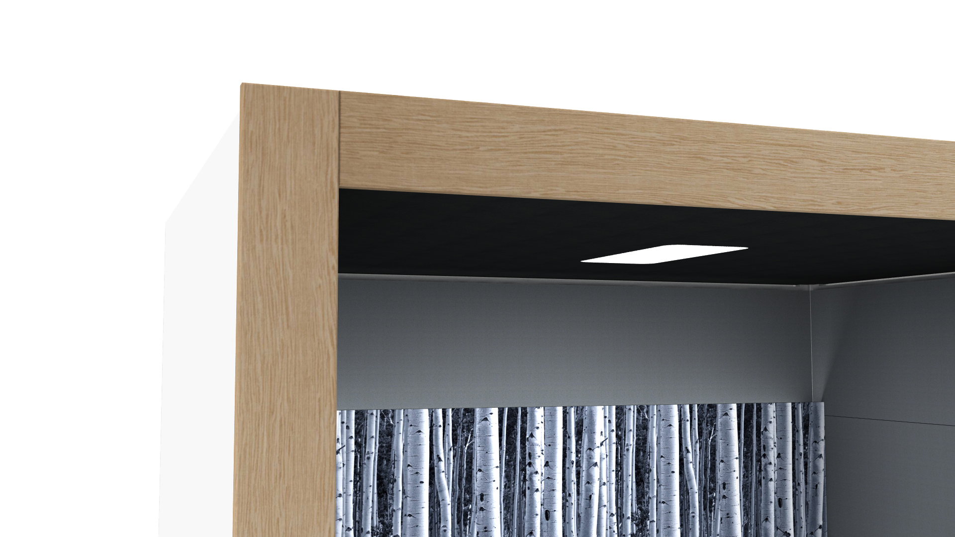 Oasis Linear Team Booth Timber Detail